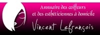 http://www.vincent-lefrancois.com
