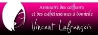 Avis Vincent-lefrancois.com
