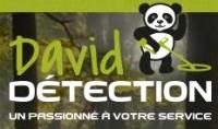 david-detection.com