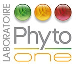 phyto-one.com