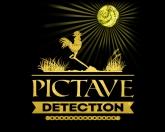 Avis Pictavedetection.net