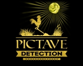 Avis Pictavedetection.net