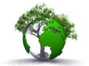 Avis Nature-et-zen.com