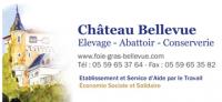 foie-gras-bellevue.com