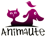 http://www.animaute.fr