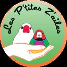 les-ptites-zailes.fr