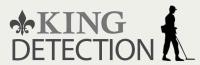 Avis King-detection.fr