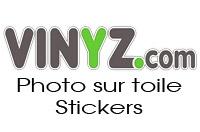 http://www.vinyz.com