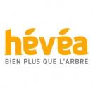 elagage-hevea.com